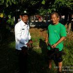 Kadis Pertanian Aceh Selatan, Yulizar, SP: Sekali Panen Capai 35 Ribu Ton