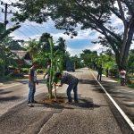 Wujud Protes, Warga Tanam Pisang di Badan Jalan Lintas Nasional Aceh Timur