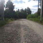 Jalan Pulo Ie Kandang Kluet Selatan Rusak Parah
