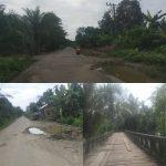 Jalan Kecamatan Kota Bahagia Rusak Parah, Pemerintah Diminta Turun Tangan
