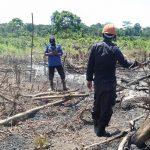 Bersama Personil Polsek, Koramil Dan Damkar, Satuan Brimob Polda Aceh Bantu Penanggulangan Karhutla Di Trumon