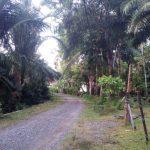 Jalan Gampong Ujongnga dan Gampong Ladang Belum Tuntas, Masyarakat: Rawan Terjadi Kecelakaan