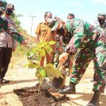 Kodim 0107/Aceh Selatan Laksanakan Pembinaan Lingkungan Hidup Dengan Penghijauan
